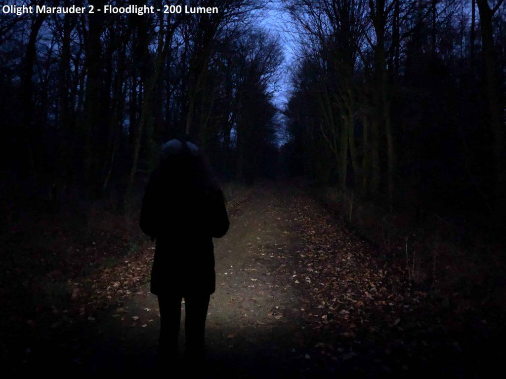 200 Lumen - Floodlight